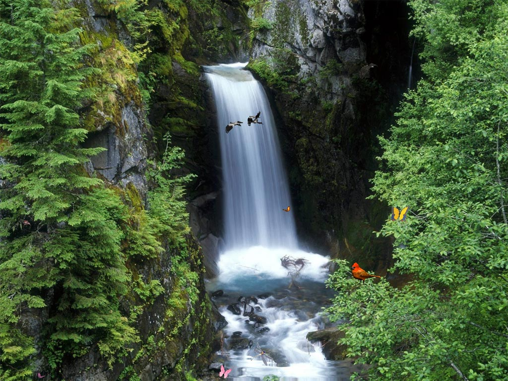 Charming Waterfalls screensaver add a magic window of ceaseless Joy 1024x768
