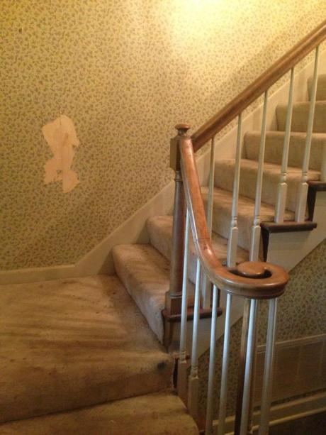 home renovation killing mold and removing wallpaper without chemicals 460x613