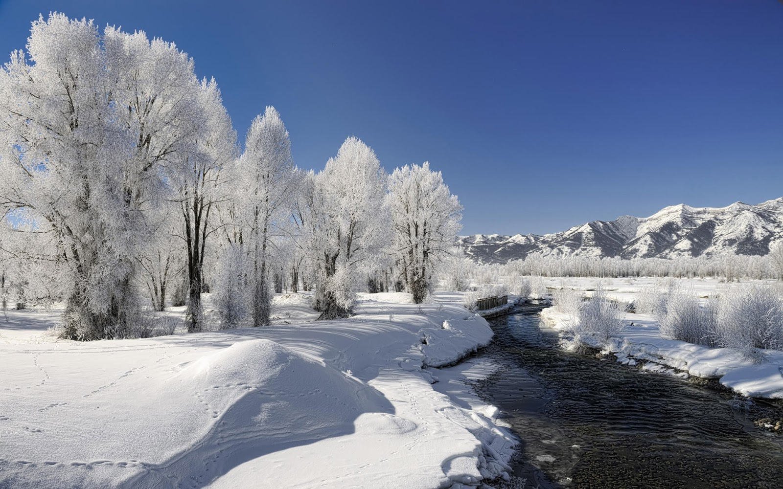 Winter season Nature beautiful HD Desktop wallpapers Natural High 1600x1000