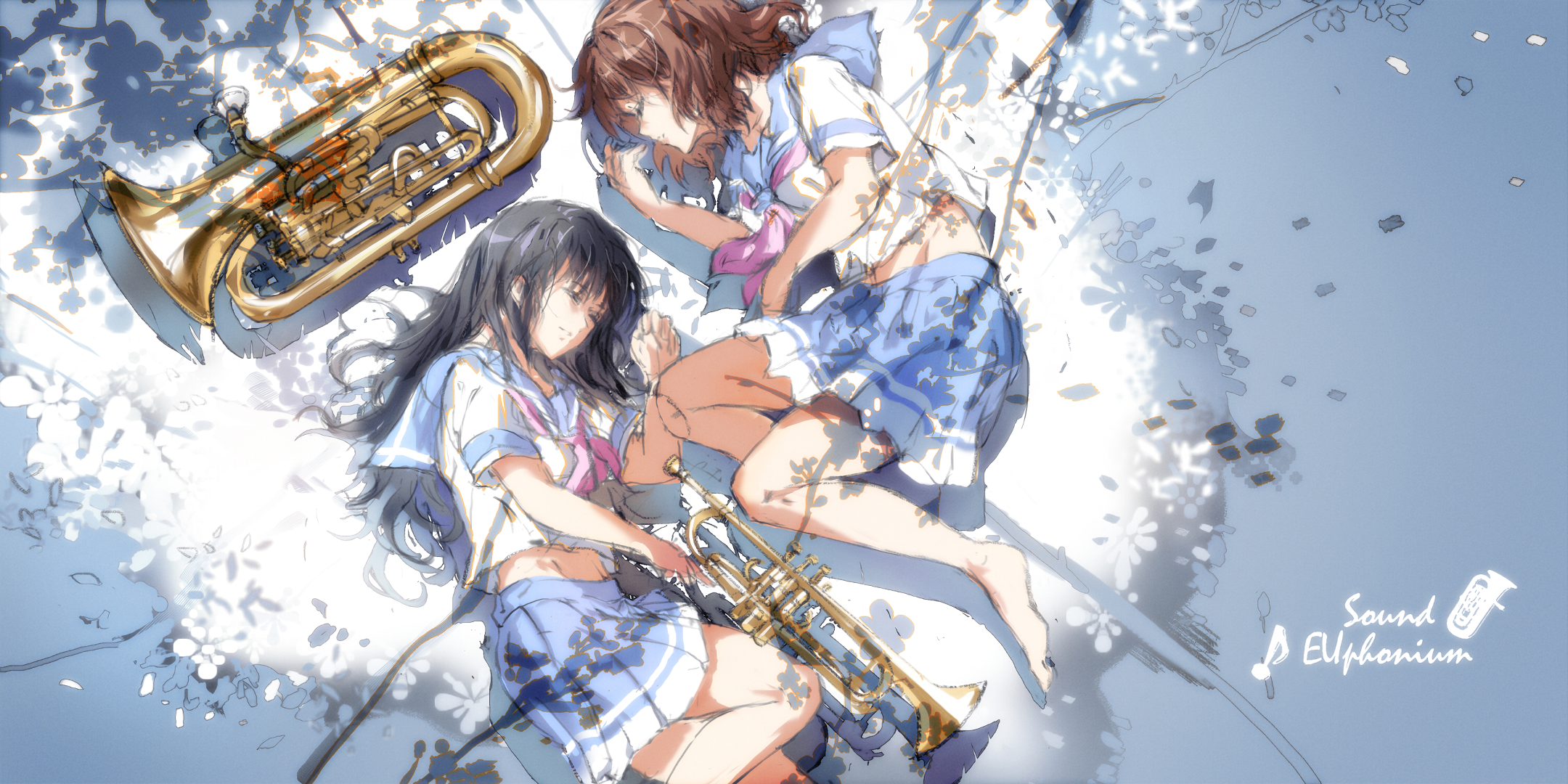 338 Sound Euphonium HD Wallpapers Background Images   Wallpaper 2160x1080