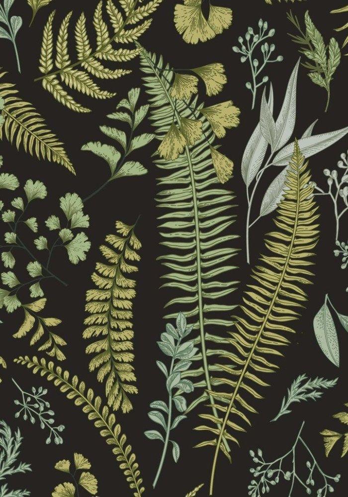 Botanical Green Leaves Wallpaper Botanical wallpaper Fern 700x1000
