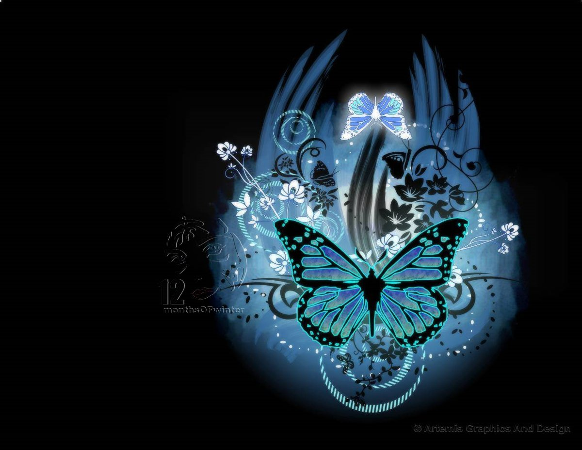 Butterfly Wallpaper by 12monthsOFwinterjpg 1200x928