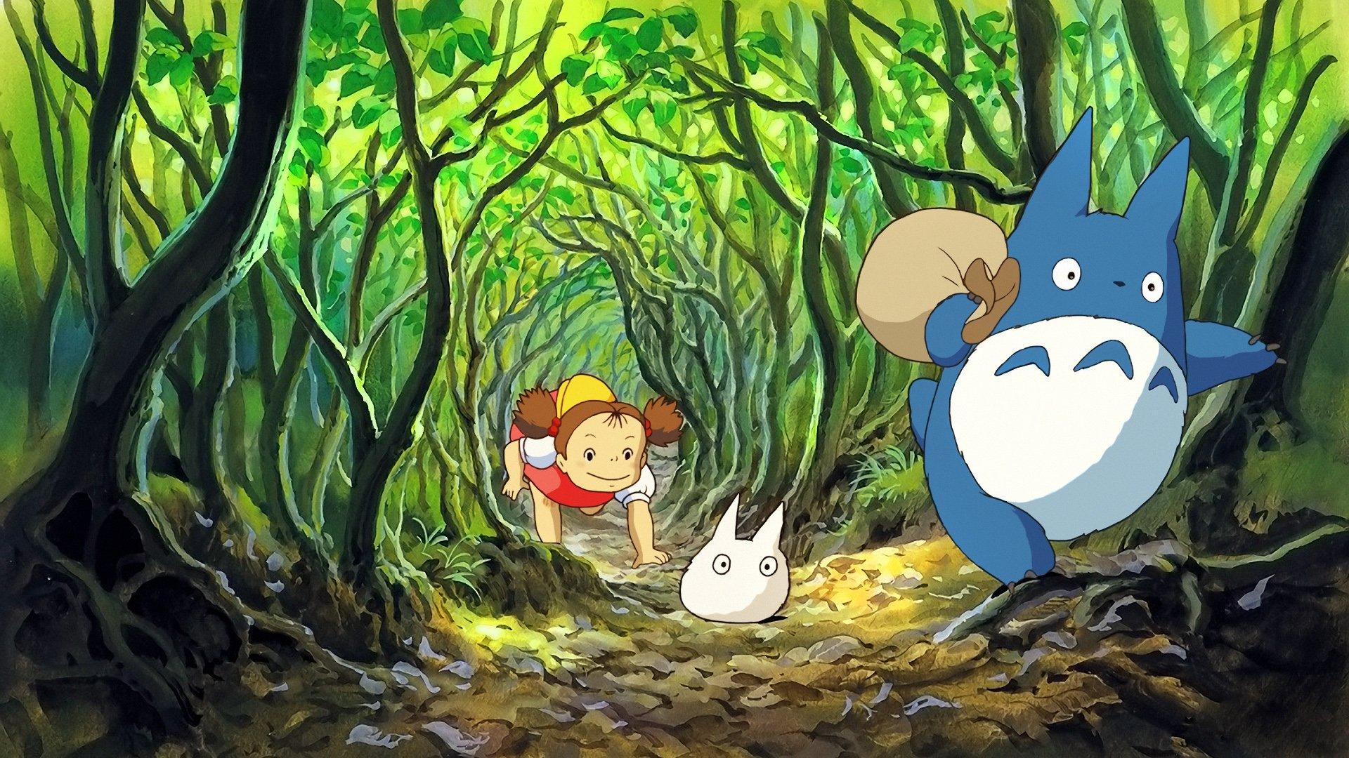 Totoro Studio Ghibli wallpaper 1920x1080 288586 WallpaperUP 1920x1080