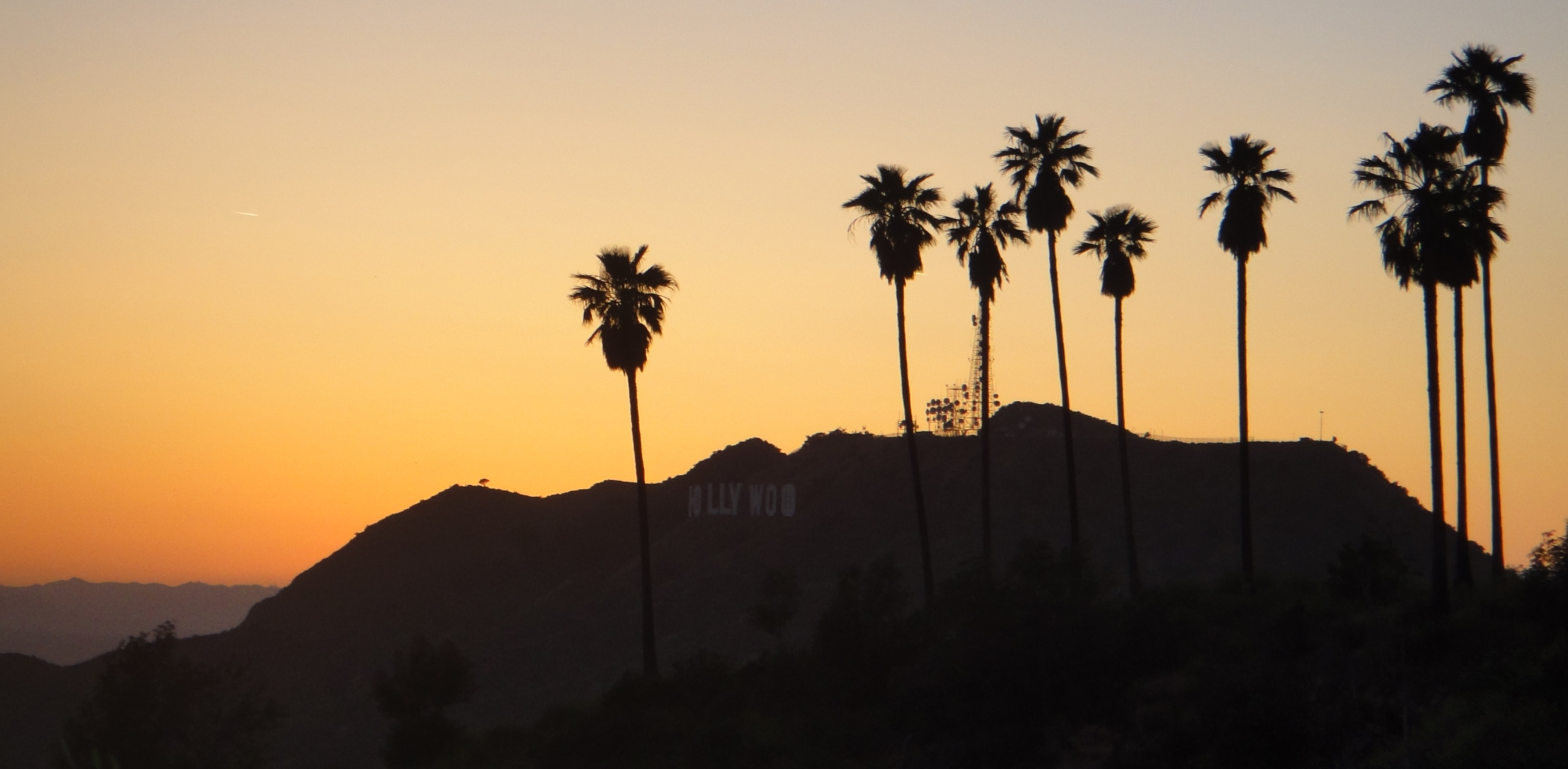Hollywood Hills Palm Trees Flickr Photo Sharing 3564x1748