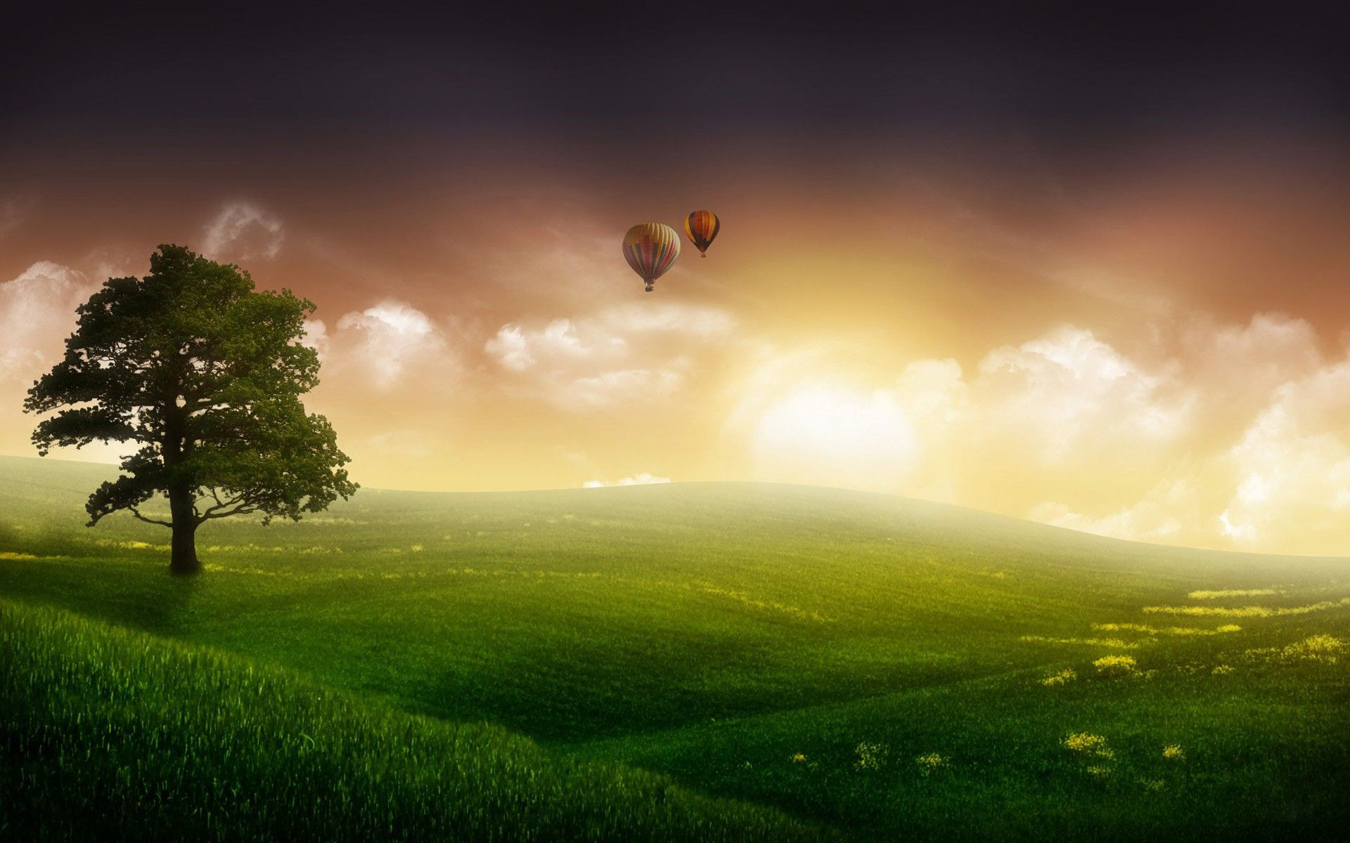 Balloon travel High Definition Wallpaper HD Resolution 1920x1200 1920x1200
