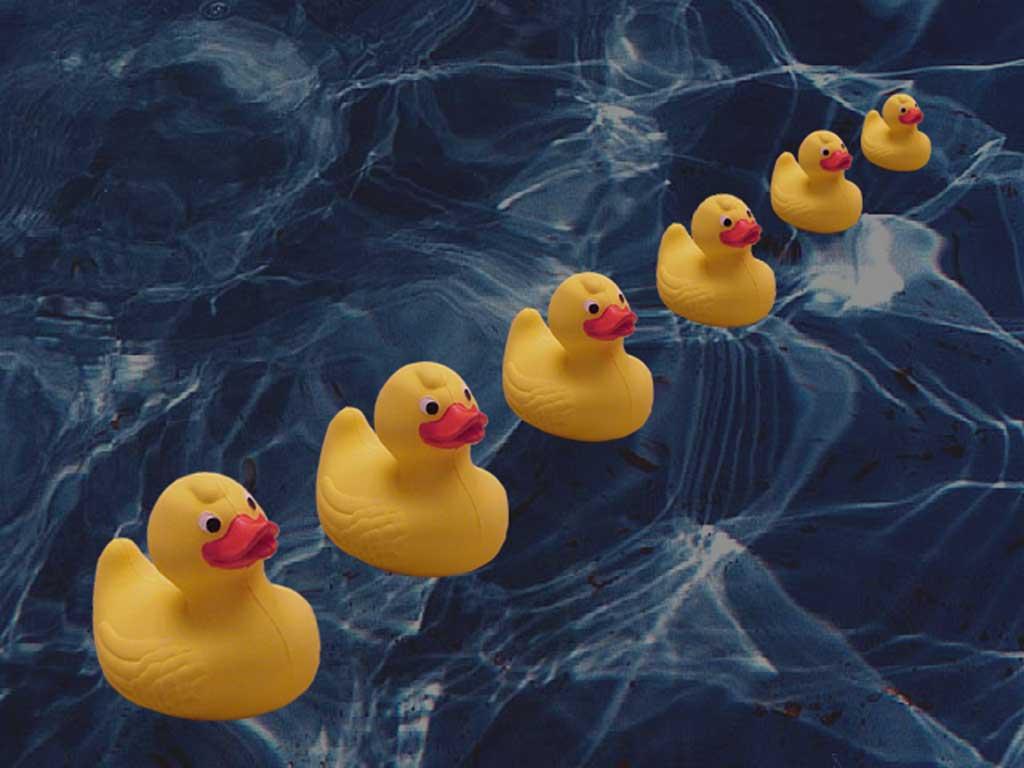73 Rubber Ducky Wallpaper On Wallpapersafari