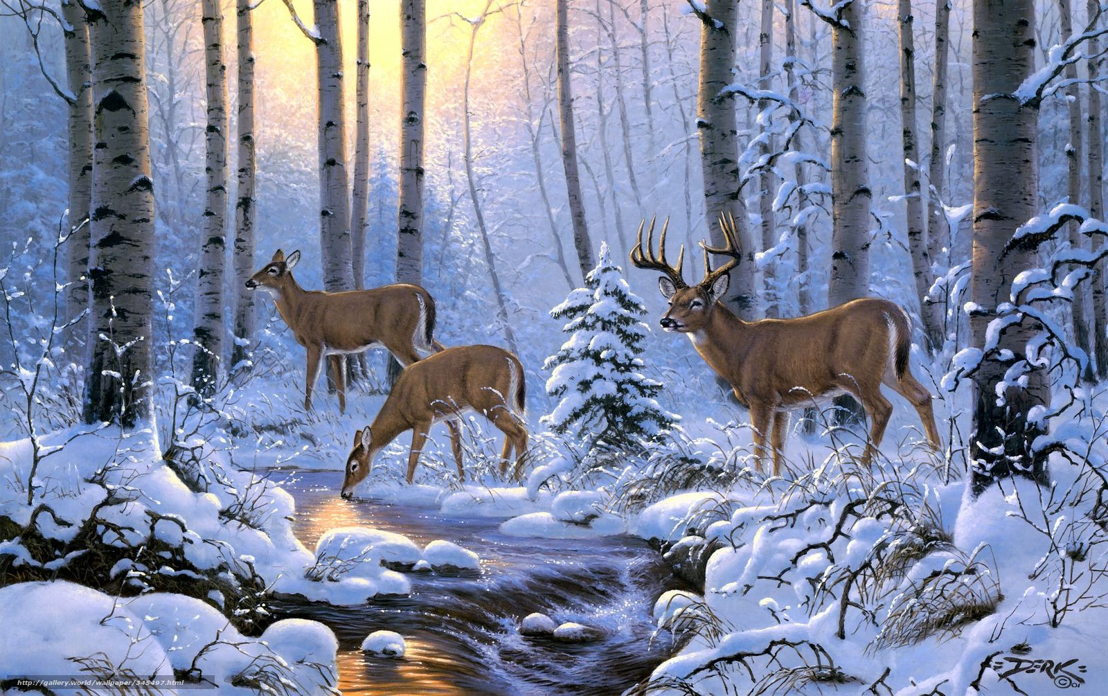 Download wallpaper derk hansen deer Winter forest desktop 1600x1005