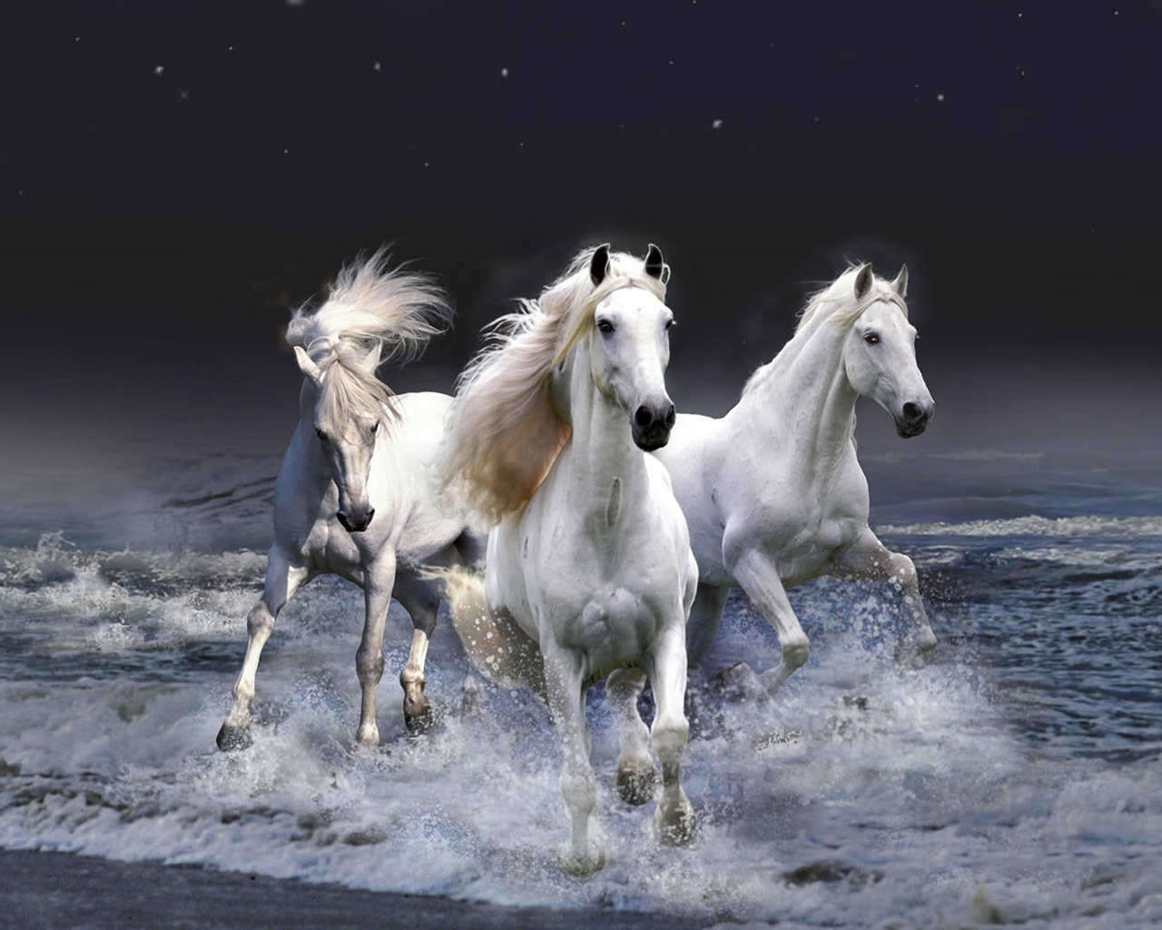 Running Horses Wallpaper   Screensavers   Animals Wallpapers 1280x1024