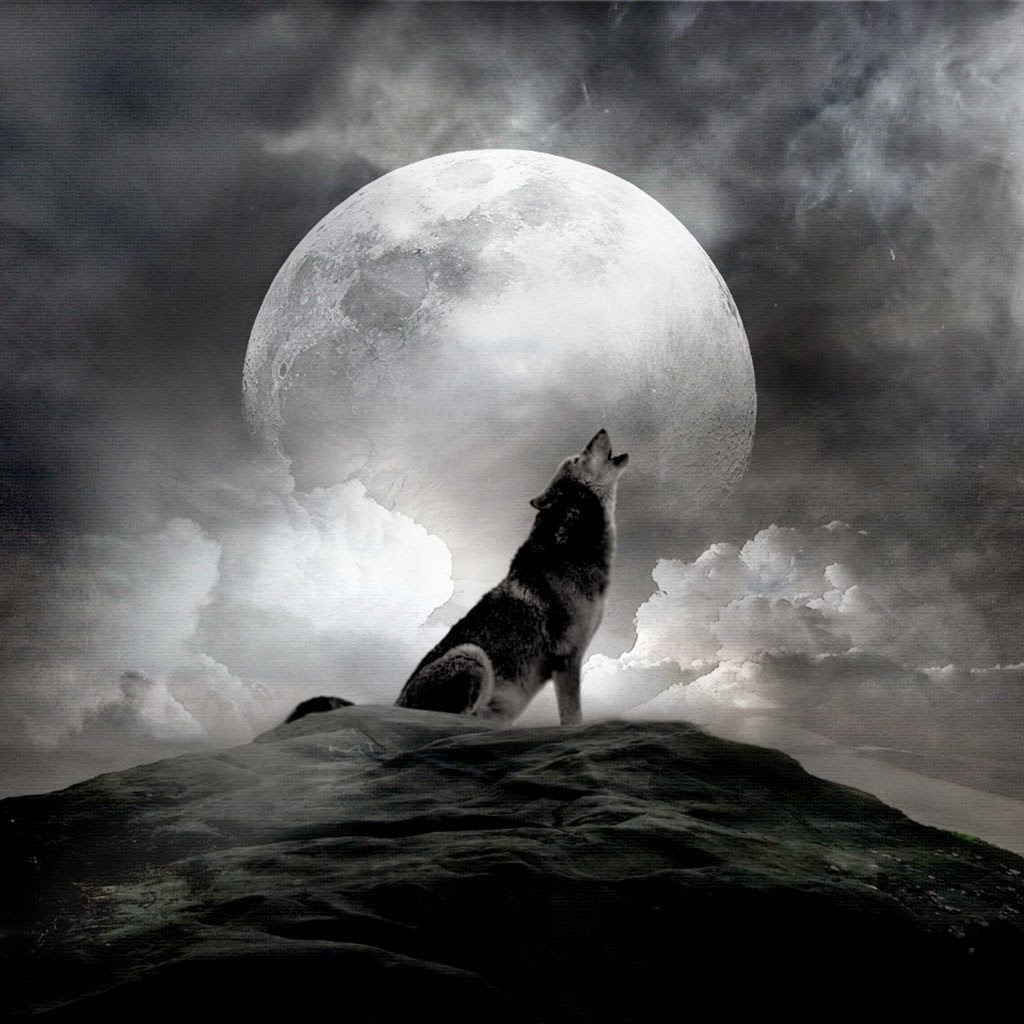 Wolf pack howling at full moon