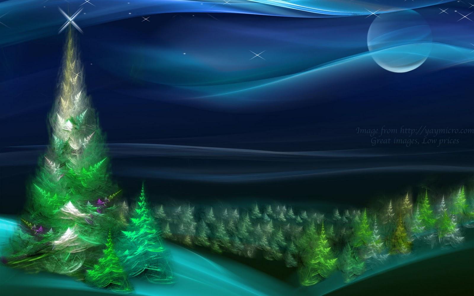 Christmas Tree Nature wallpaper   Desktop Wallpaper 1600x1000