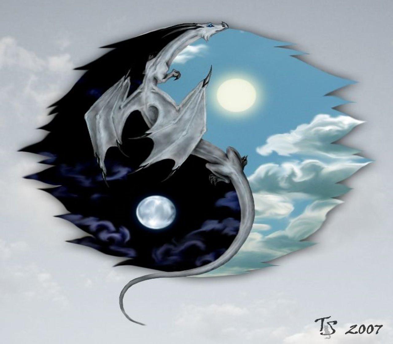 Dragon-Ying & Yang wallpaper - ForWallpaper.com