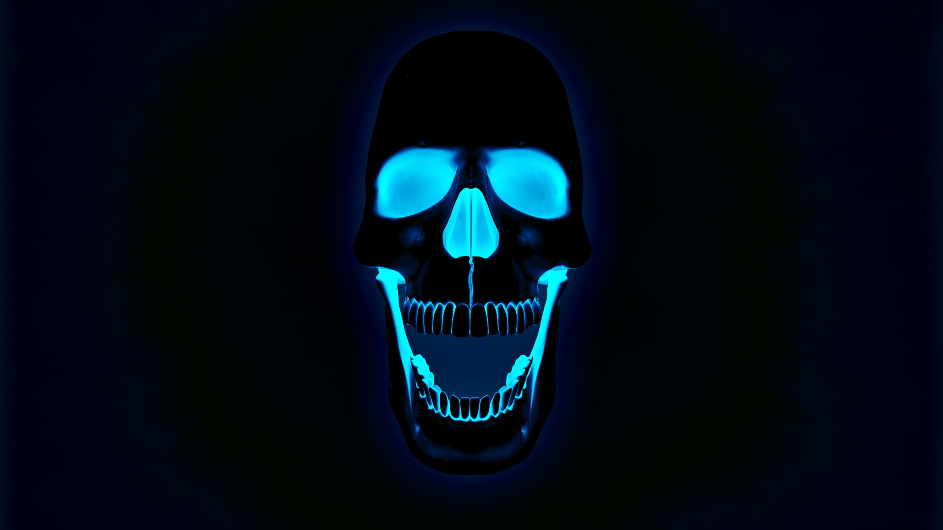 Glowing Neon Skull PhotosHD WallpapersImagesPictures 1920x1080