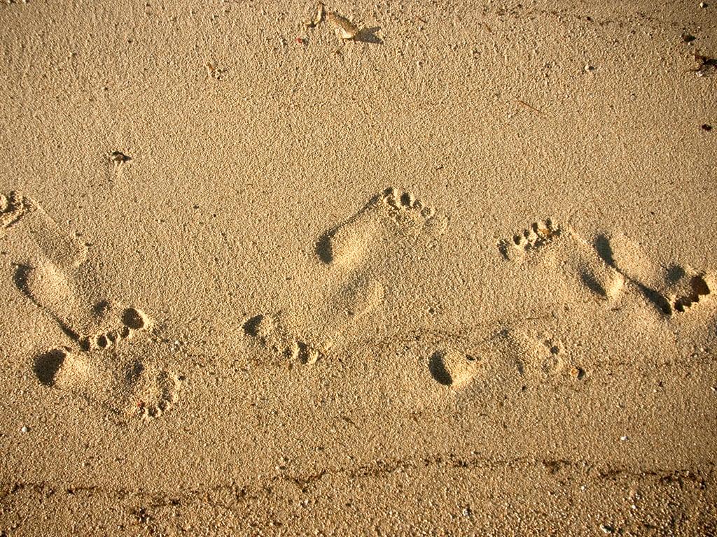 download wallpaper by photographer Olga Saliy Footprints in the 1024x768