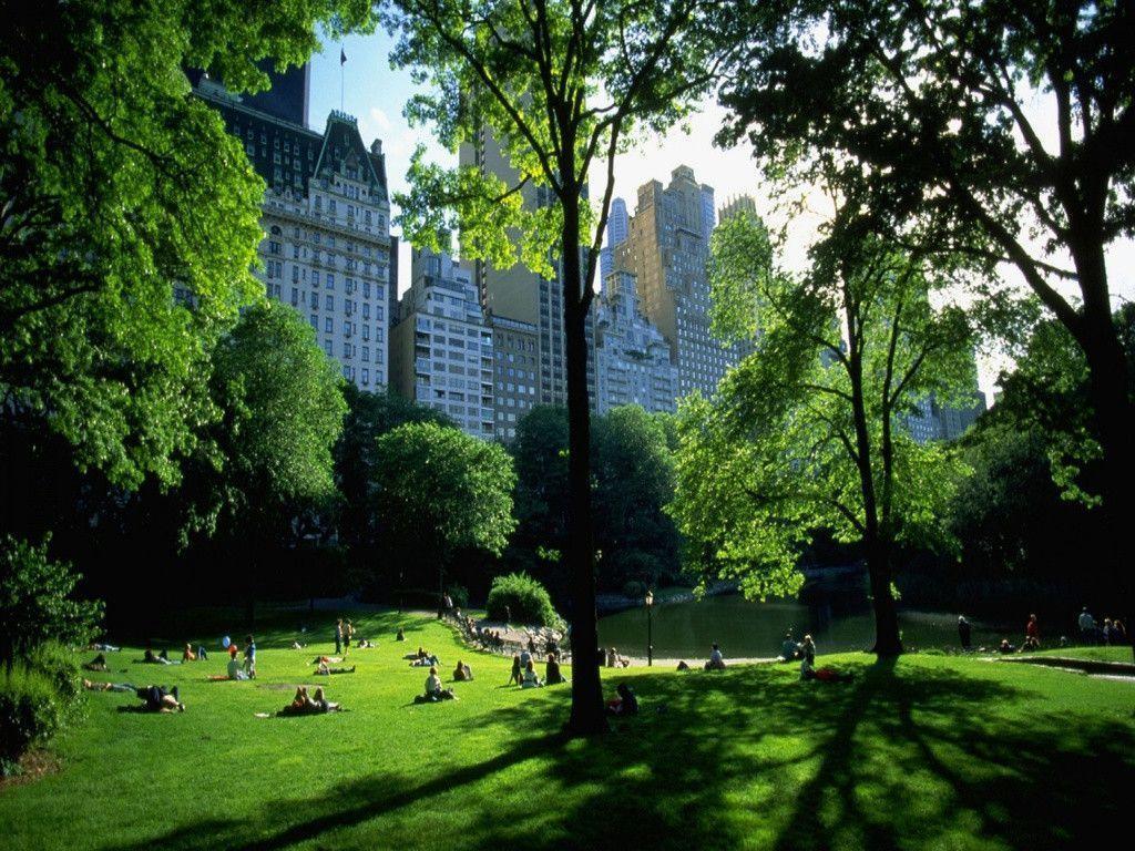 Central Park Backgrounds 1024x768