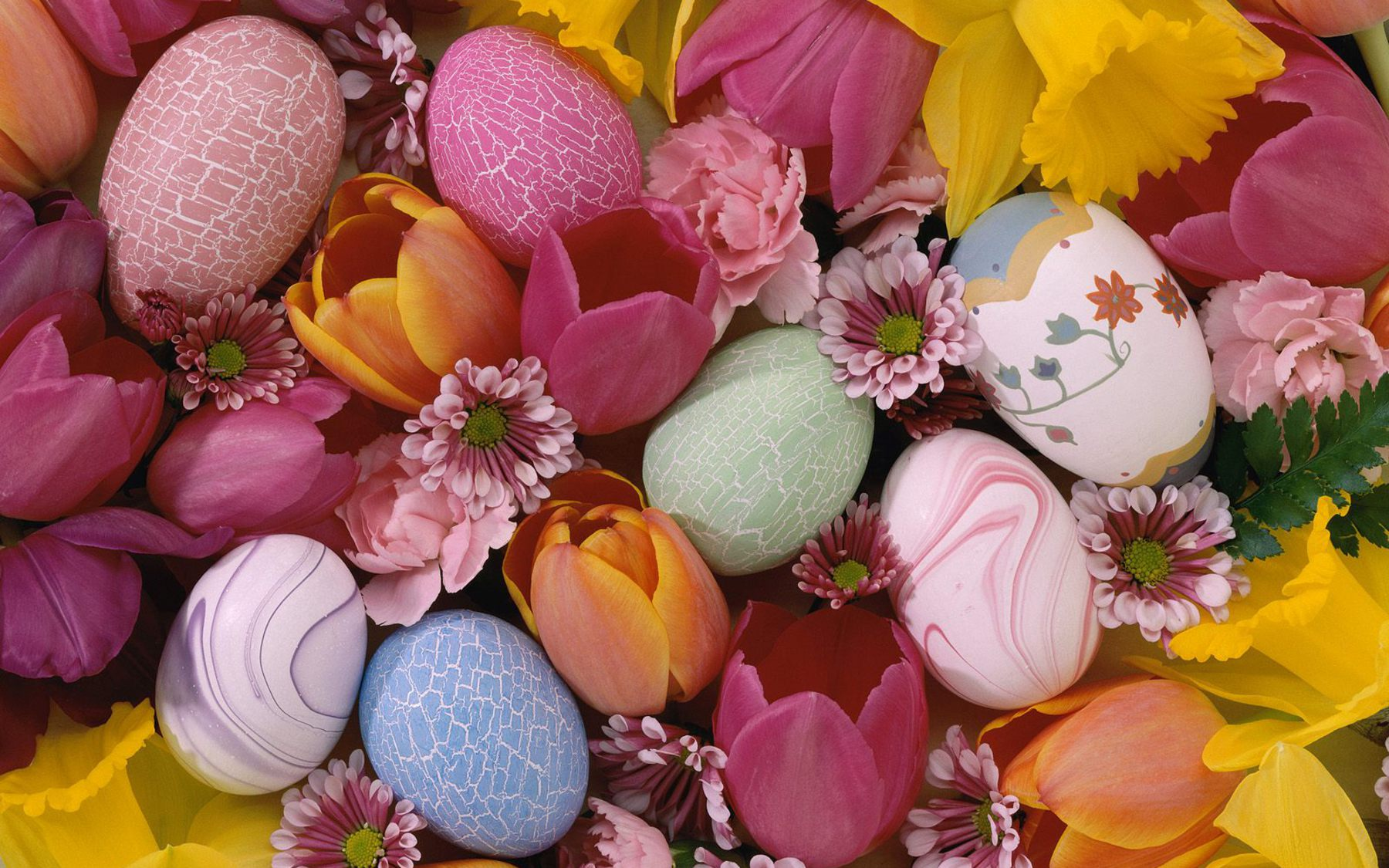 Easter Day Wallpapers HD Easter Images 1800x1125
