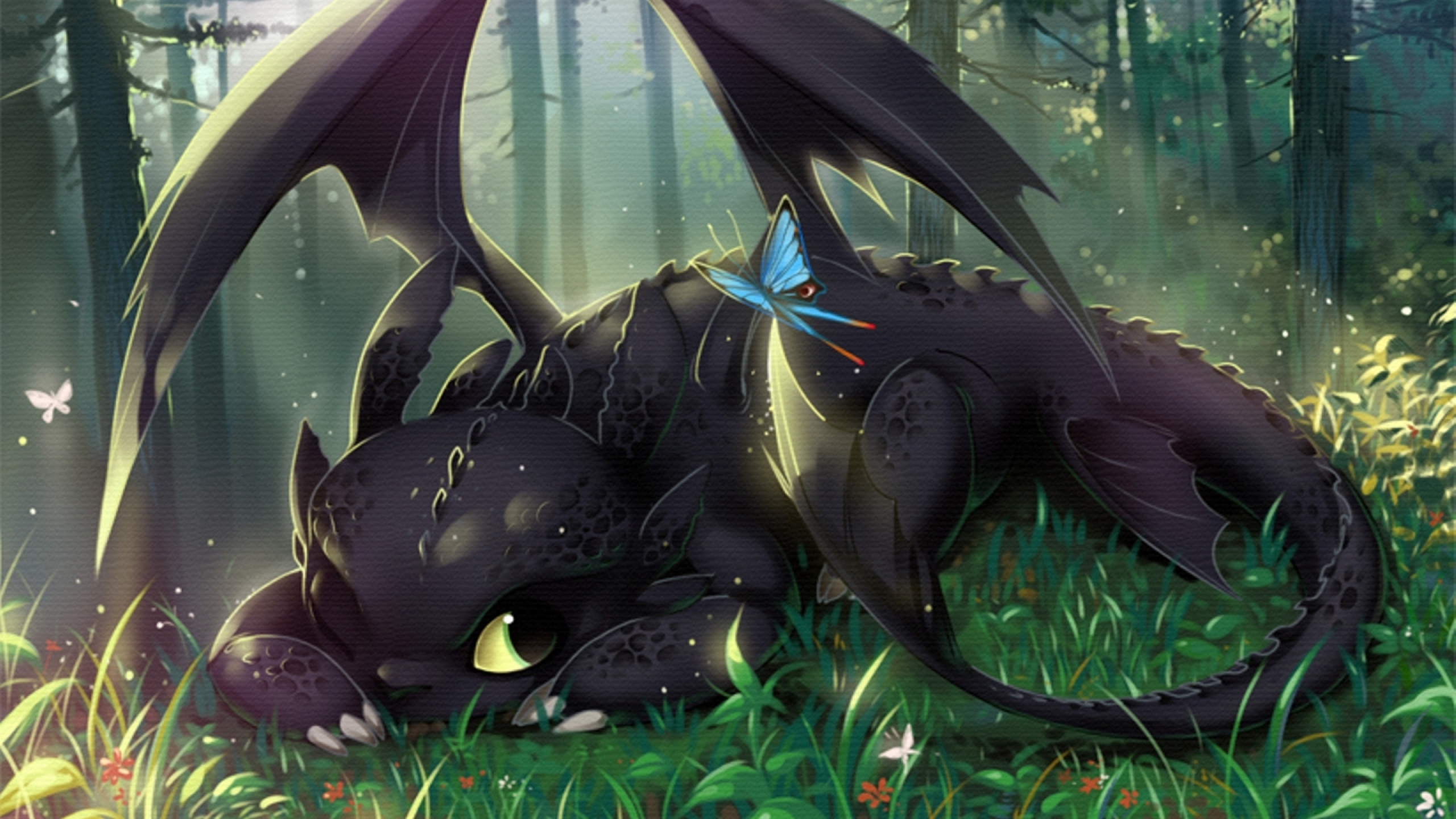 night fury how to train your dragon hi hd wallpaper night fury night 2560x1440
