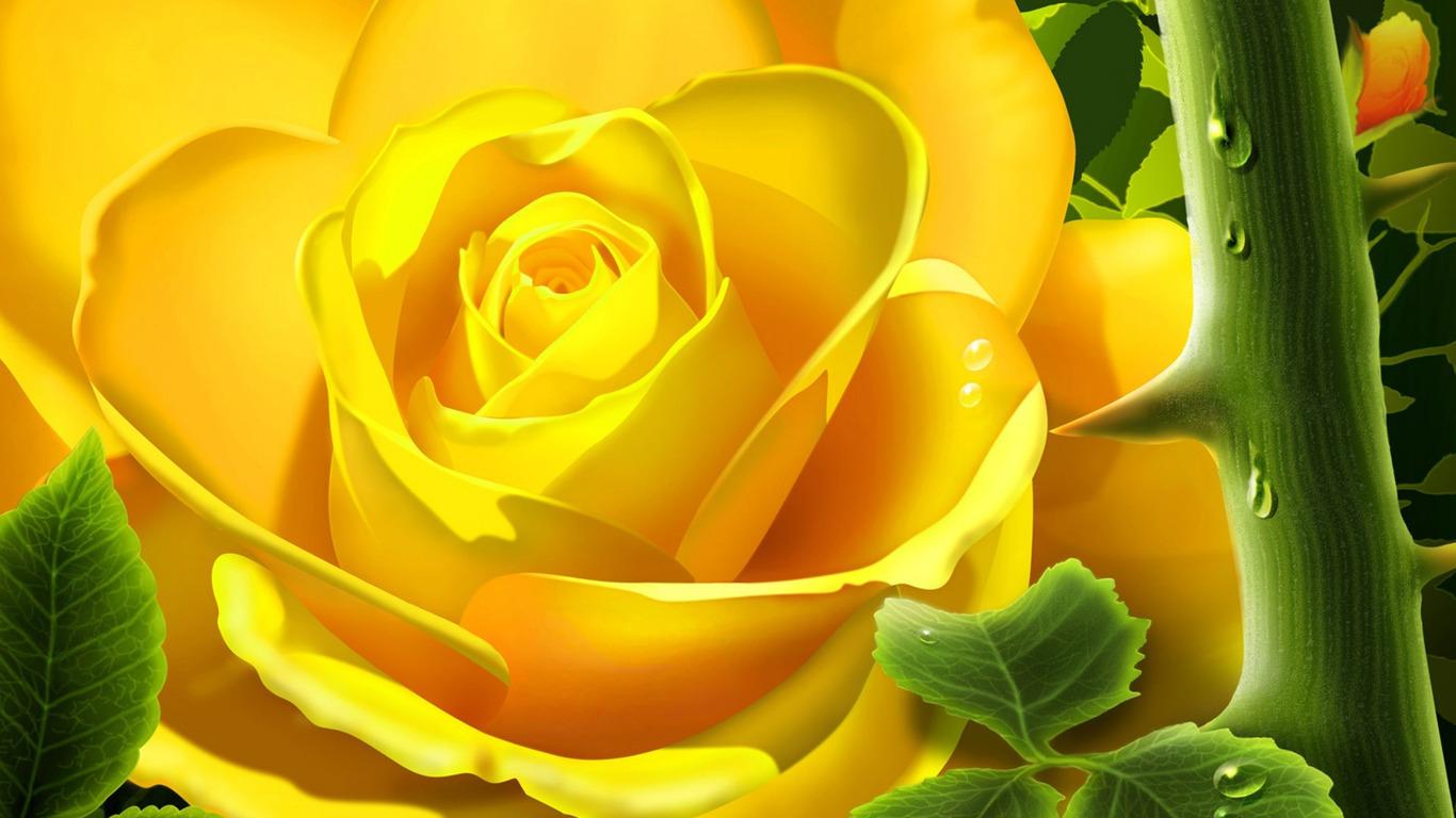 Yellow Roses Wallpaper Wallpapersafari