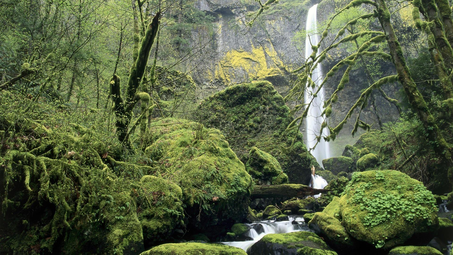 Oregon Scenery Wallpaper Wallpapersafari