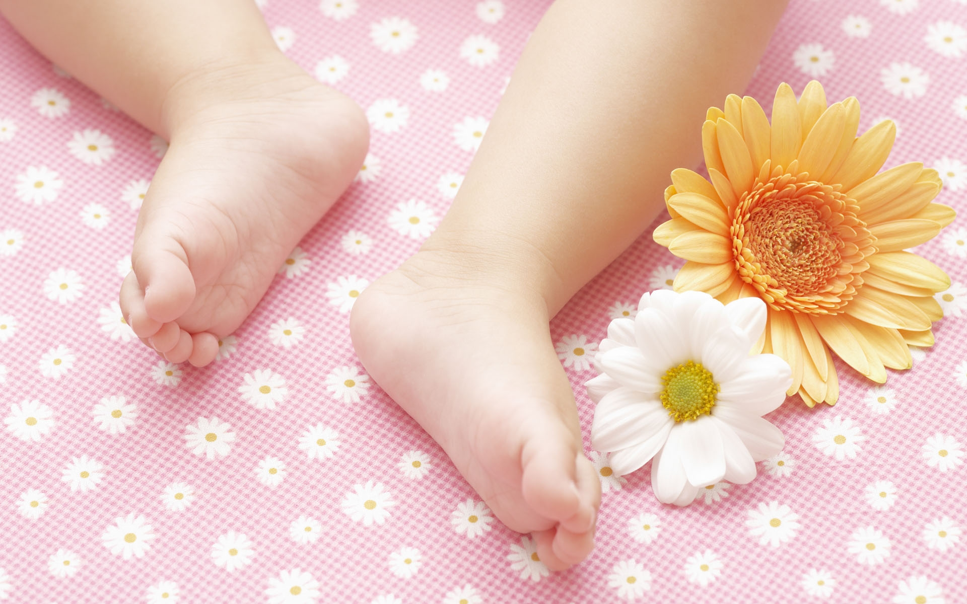 Download Wallpaper child feet flowers baby HD Background 1920x1200