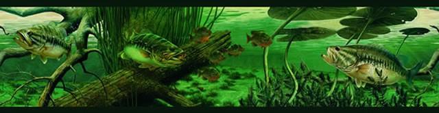 Bass Fishing Wallpaper Largemouth bass fishing wall 640x165