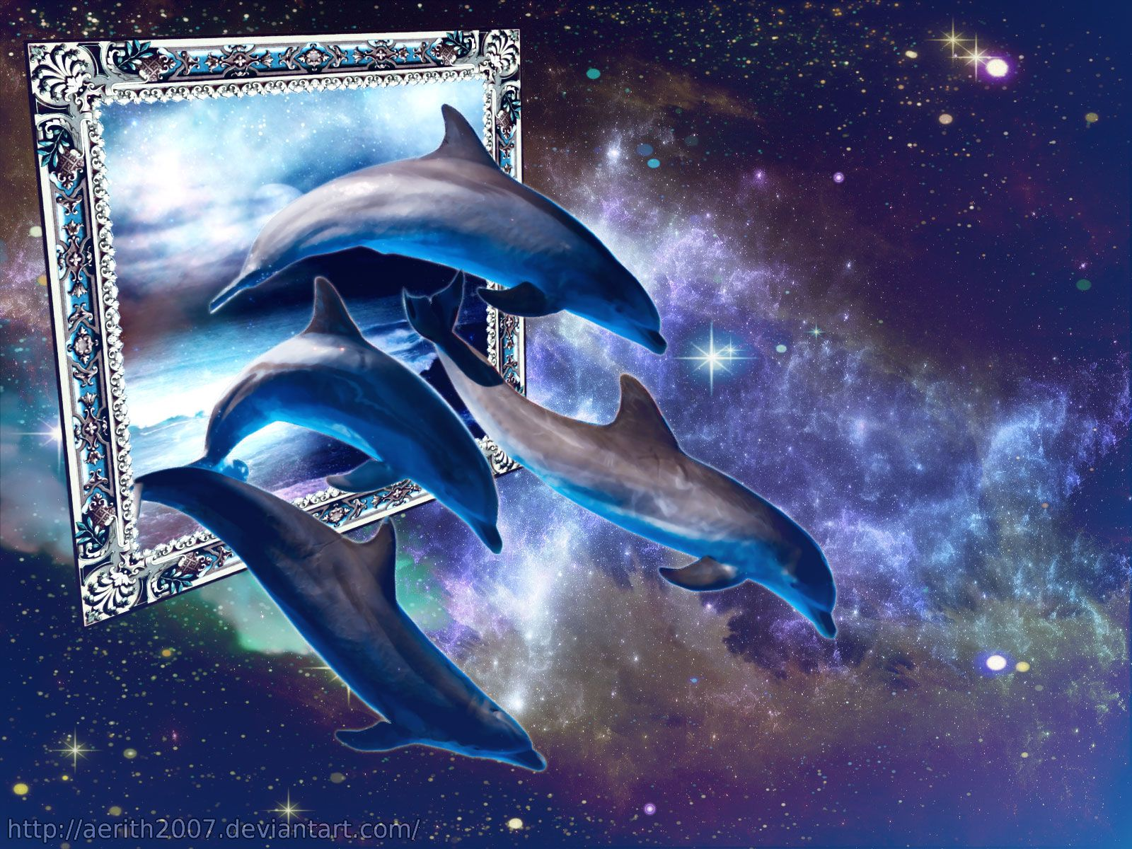 Wonderful Dolphin Hd Wallpapers 1600x1200PX Dolphin 1600x1200