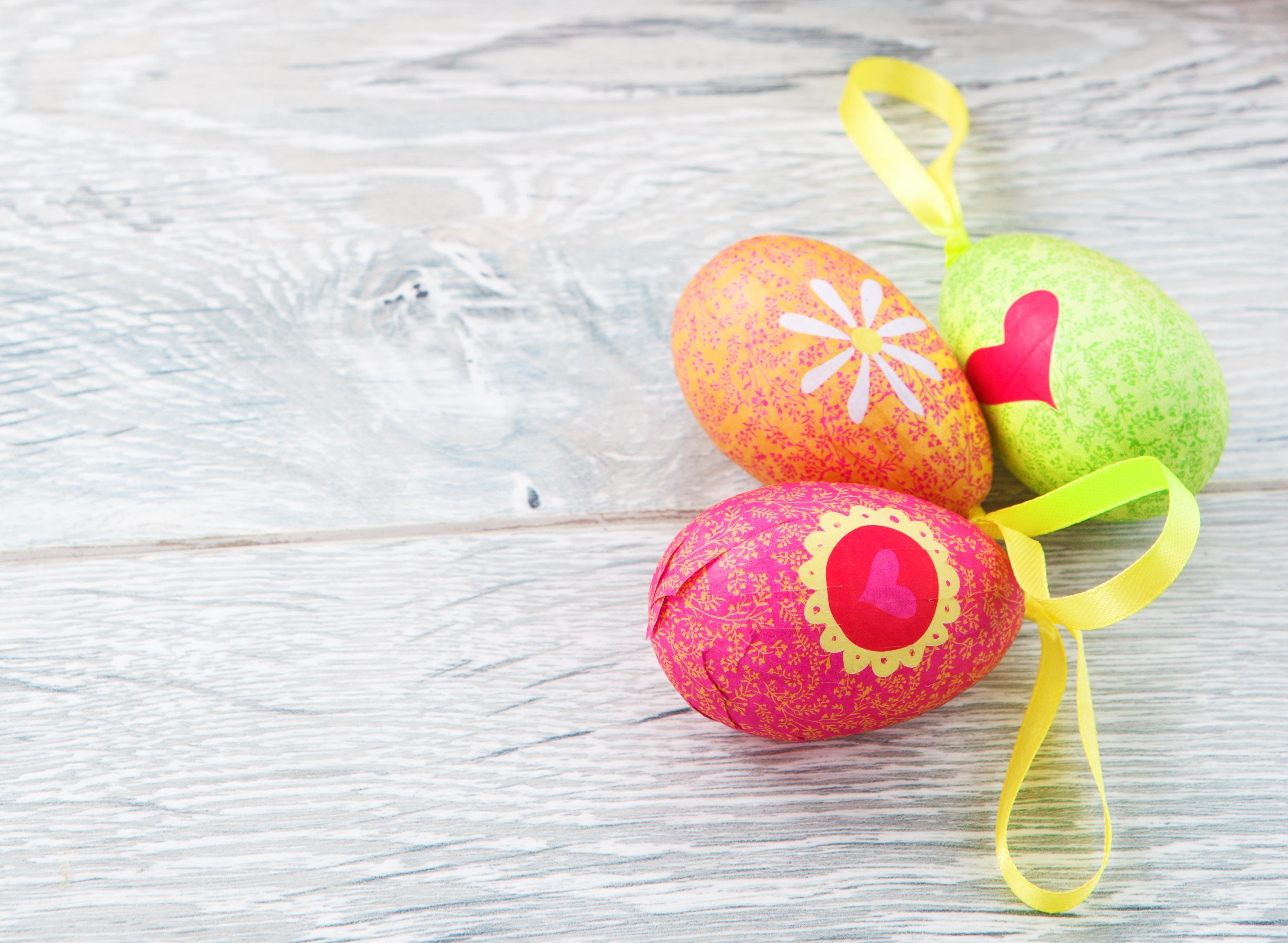 Easter Eggs Decoration HD Photo HD Wallpapers 3744x2742