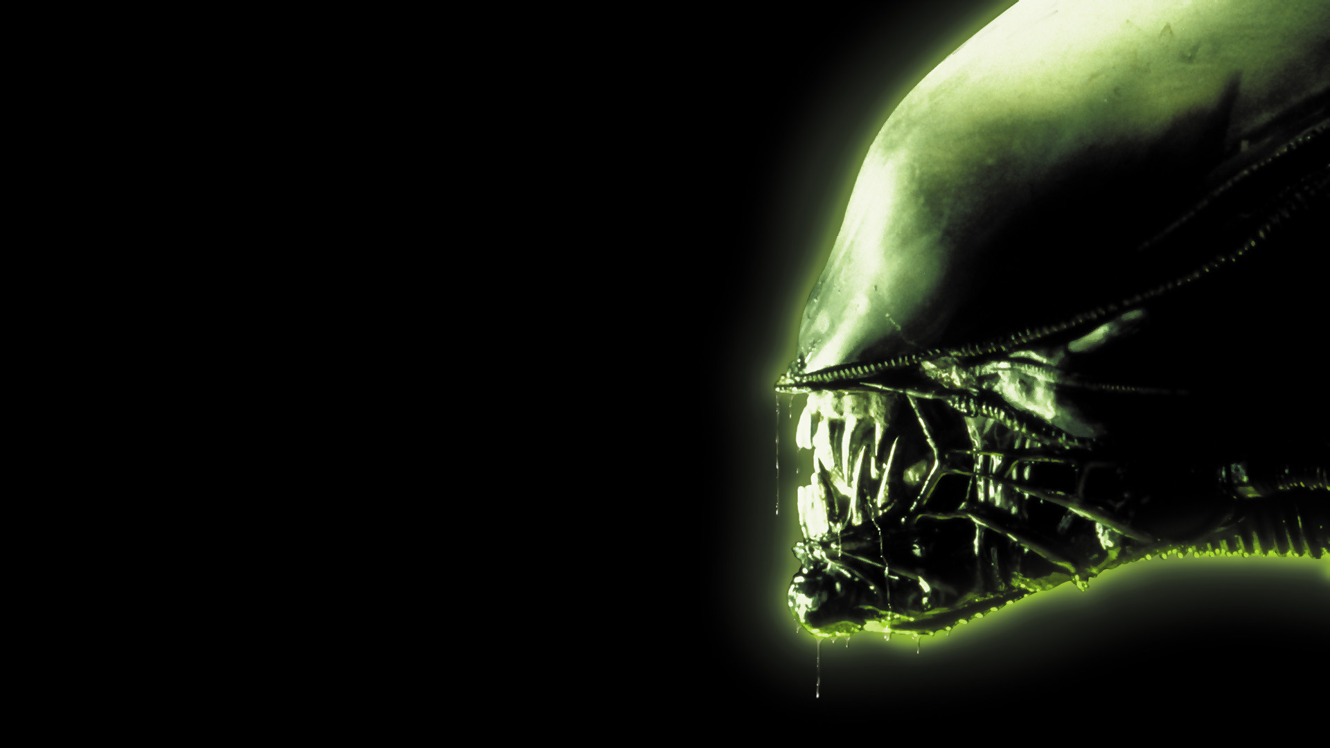 Alien Attack Wallpapers 1920x1080
