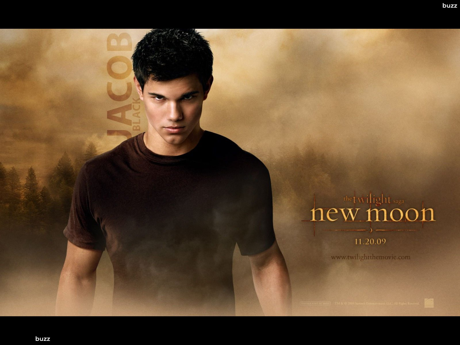 Taylor Lautner Jacob Black HD Wallpaper 1600x1200