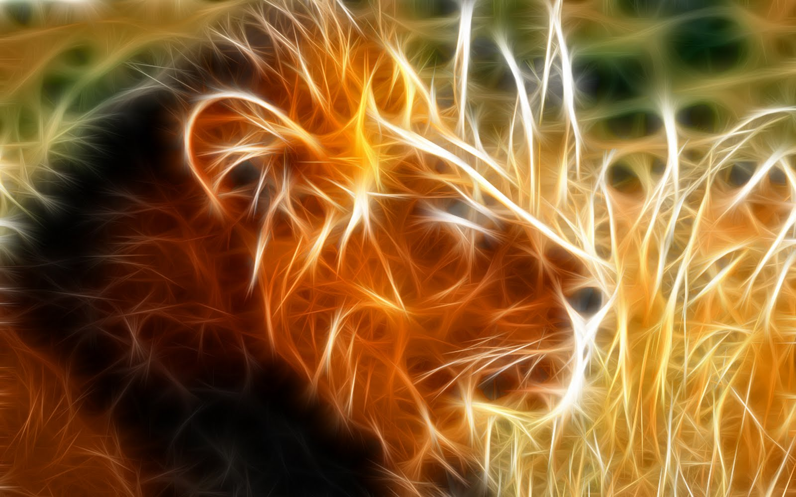 Wallpapers Box Abstract Lion HD Wallpapers Backgrounds 1600x1000