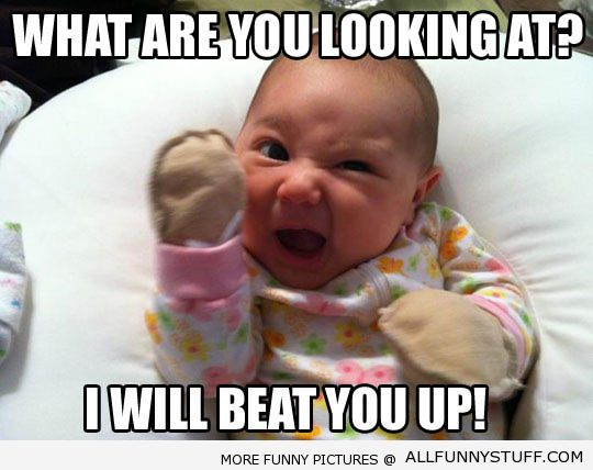 Funny Baby Jokes 20 Hd Wallpaper Wallpaper 540x428