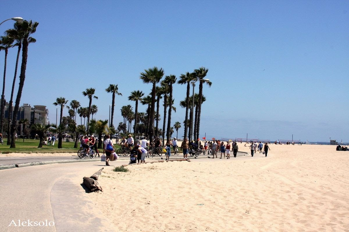 Venice Beach Wallpaper 1200x800