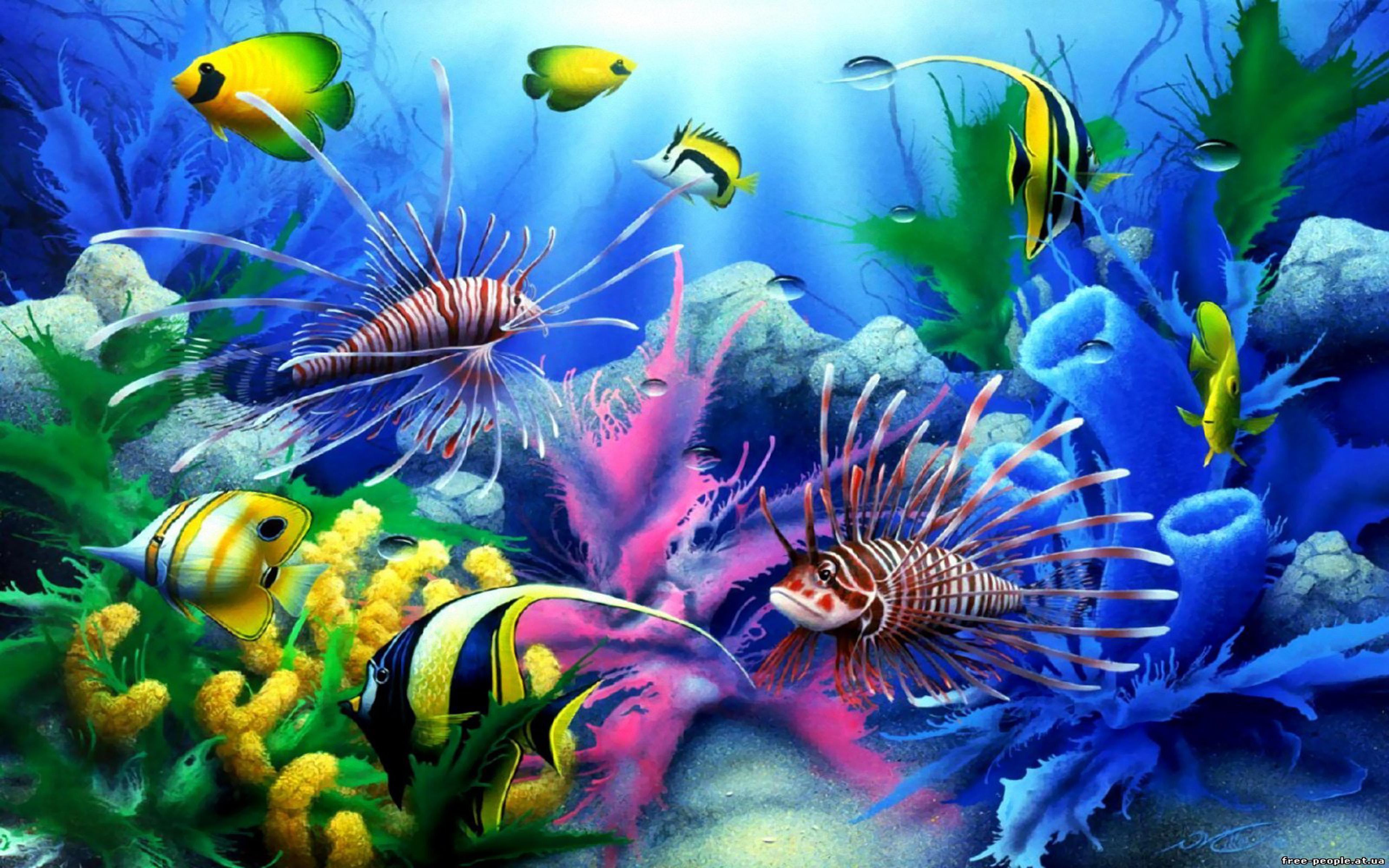 Яркие краски подводного мира  № 618893 бесплатно
