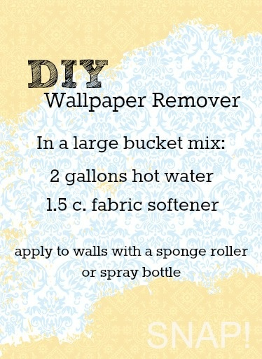 How to Remove Wallpaper 374x511