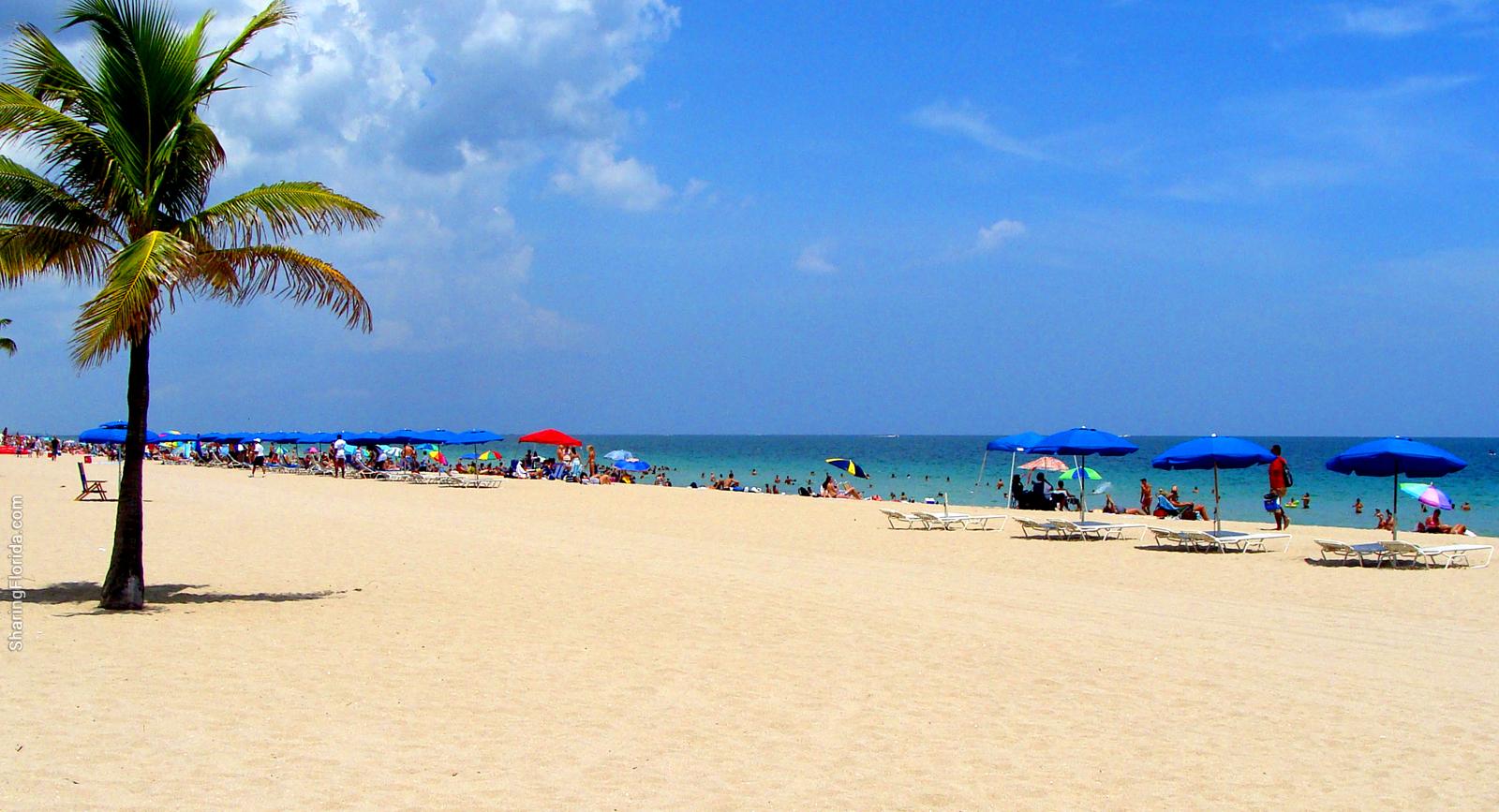 florida beach desktop wallpaper wallpapersafari