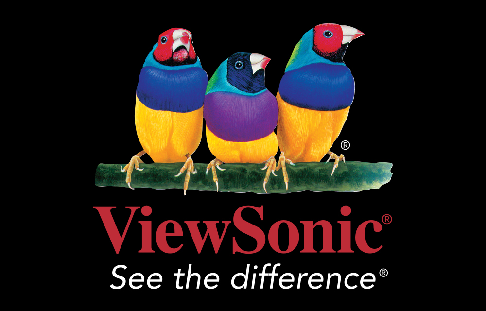 Viewsonic Style Guide 1000x640