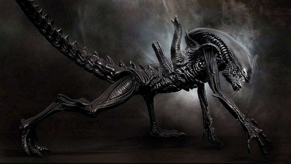 5 Stages Of Alien Xenomorph Life Cycle Proof Of Aliens Life 960x540