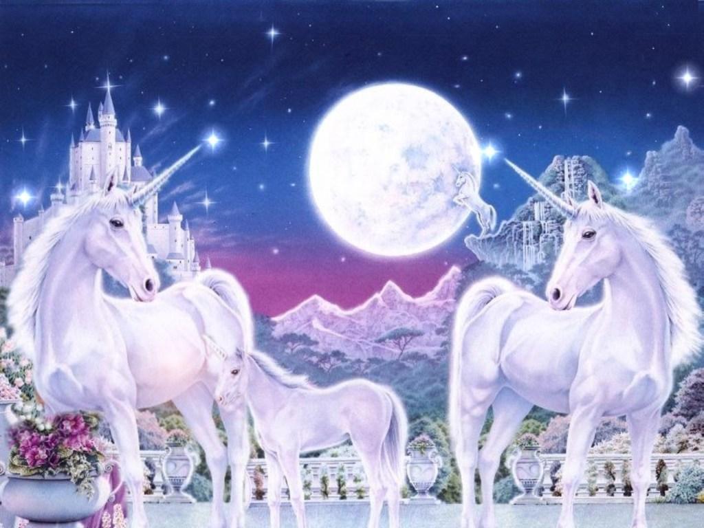 Unicorn Family wallpapers Unicorn Family stock photos 1024x768