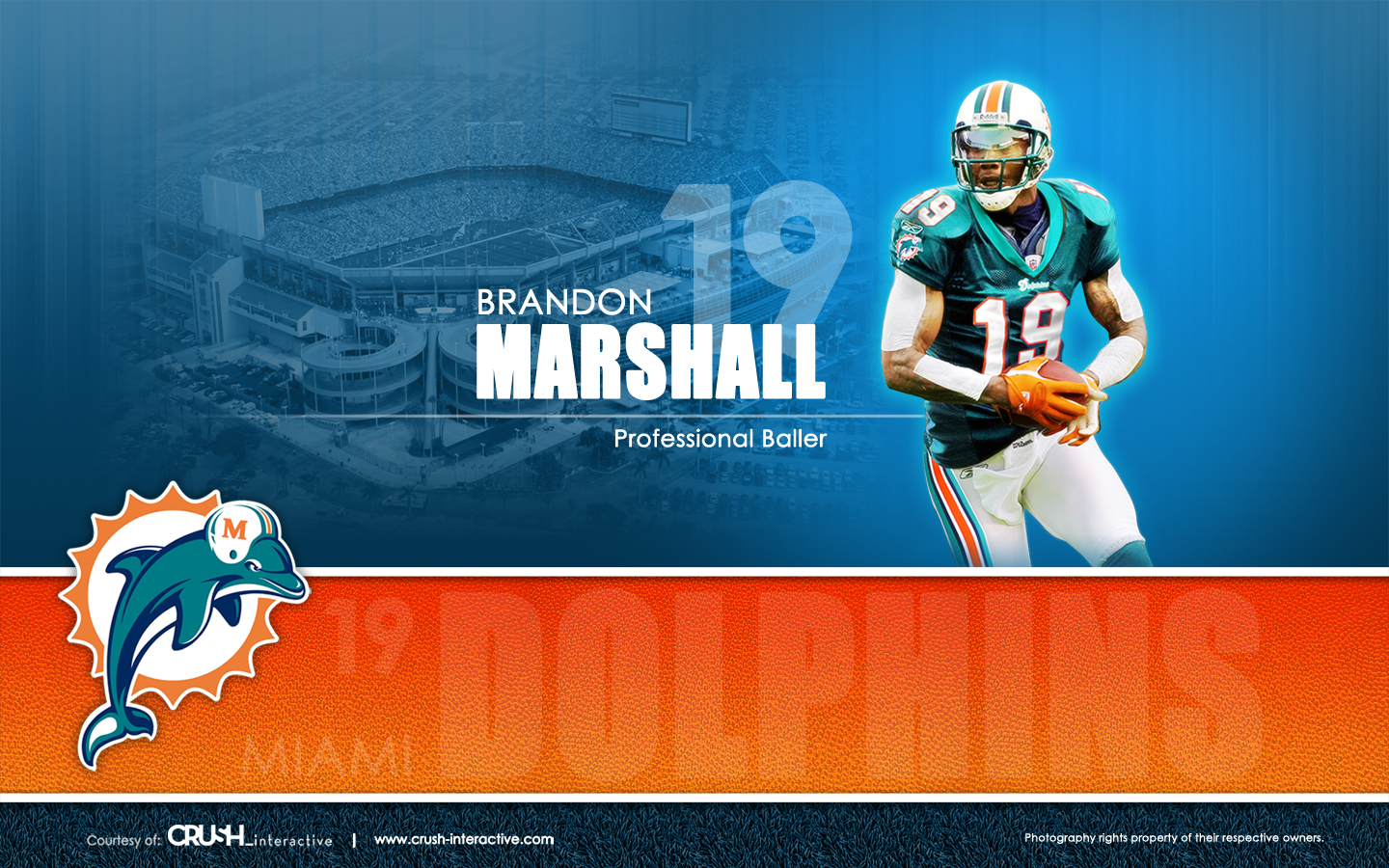 Enjoy This Miami Dolphins Background Wallpapers 1440x900