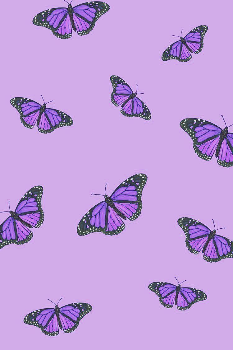 purple aesthetic Purple butterfly wallpaper Purple aesthetic 750x1125