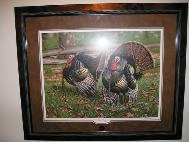 nwtf forum image search results 640x480