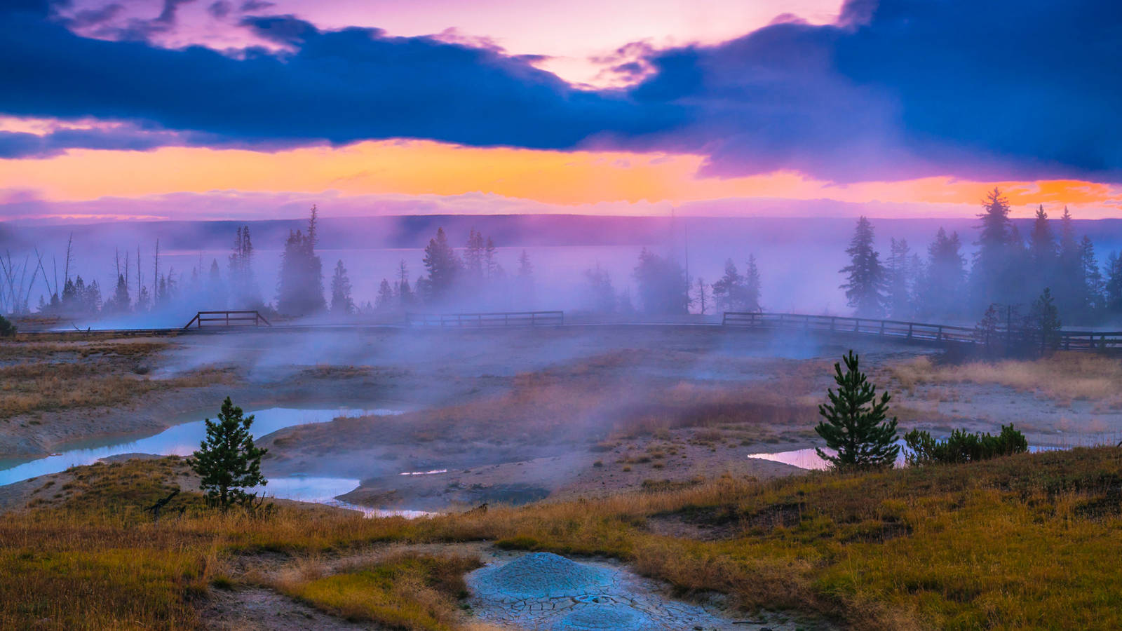 National Geographic Yellowstone Live Premiere National Parks 1600x900