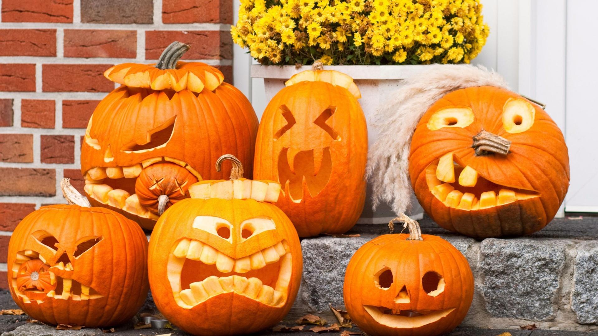 Halloween Pumpkin 1920x1080 Screensaver wallpaper 1920x1080