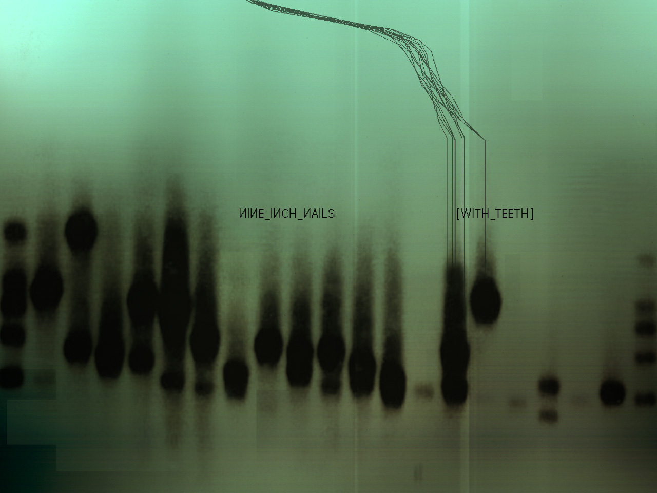Free Download Nine Inch Nails Images Nine Inch Nails Hd Wallpaper