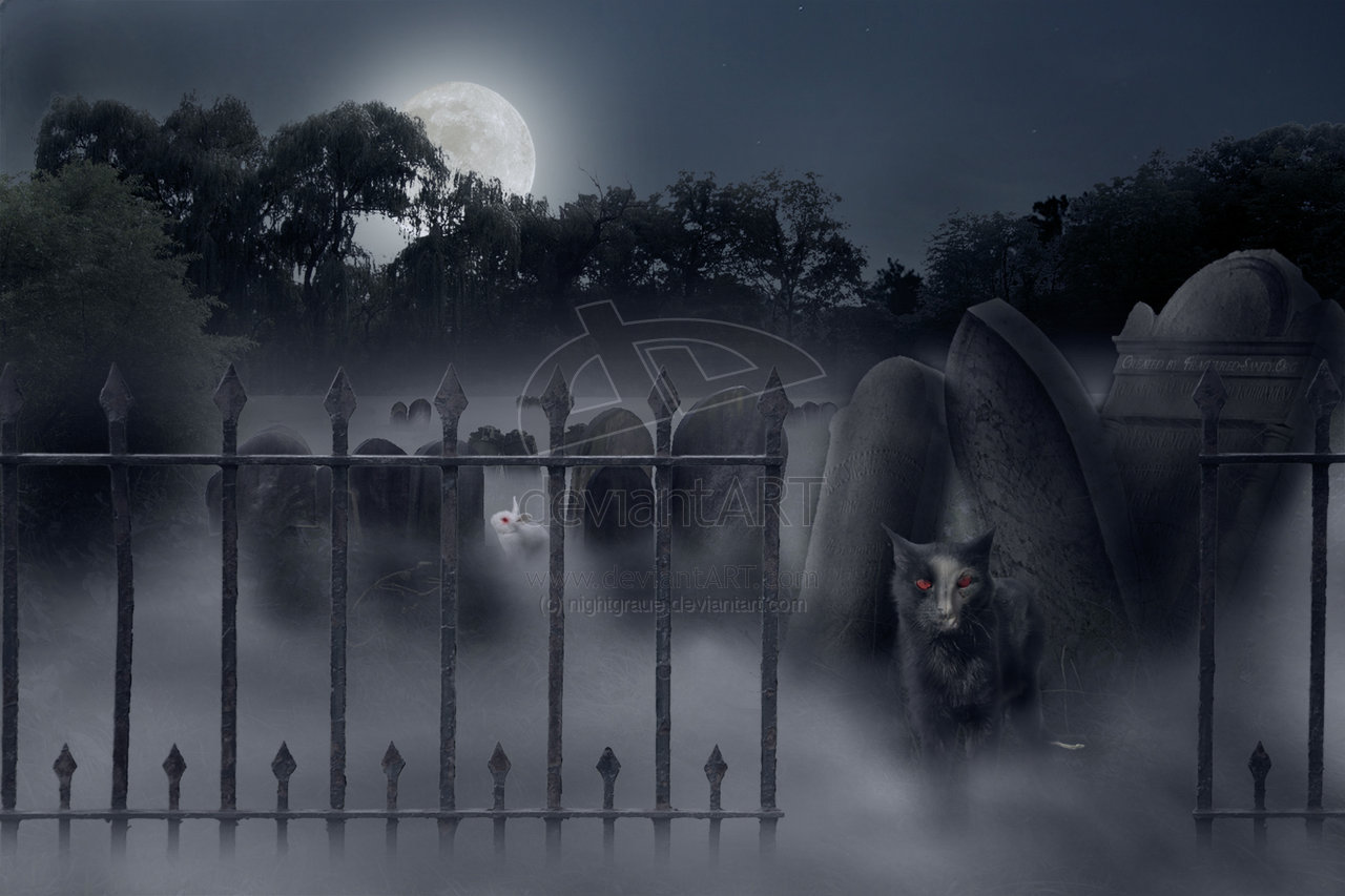 spooky graveyard wallpaper wallpapersafari