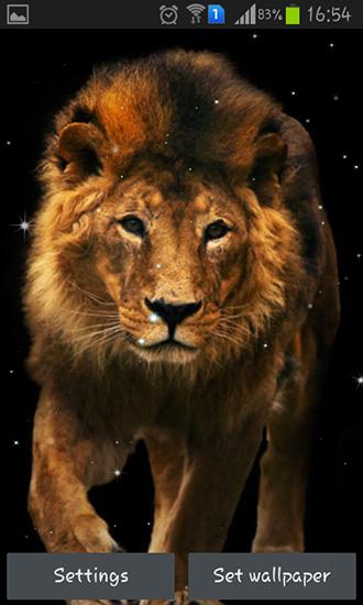Lion   live wallpaper screenshots How does it look Lion live 330x550