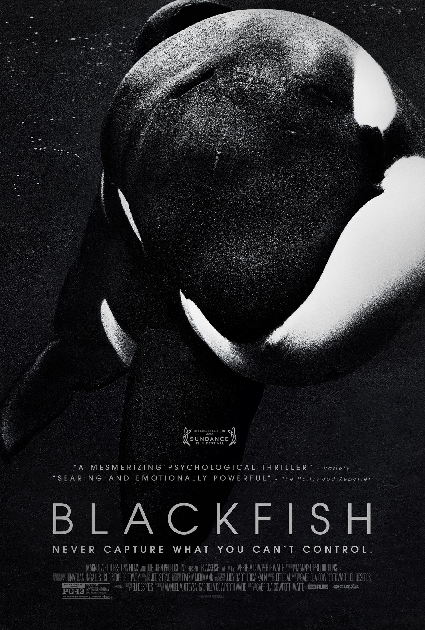 Blackfish 2013   Photo Gallery   IMDb 1382x2048