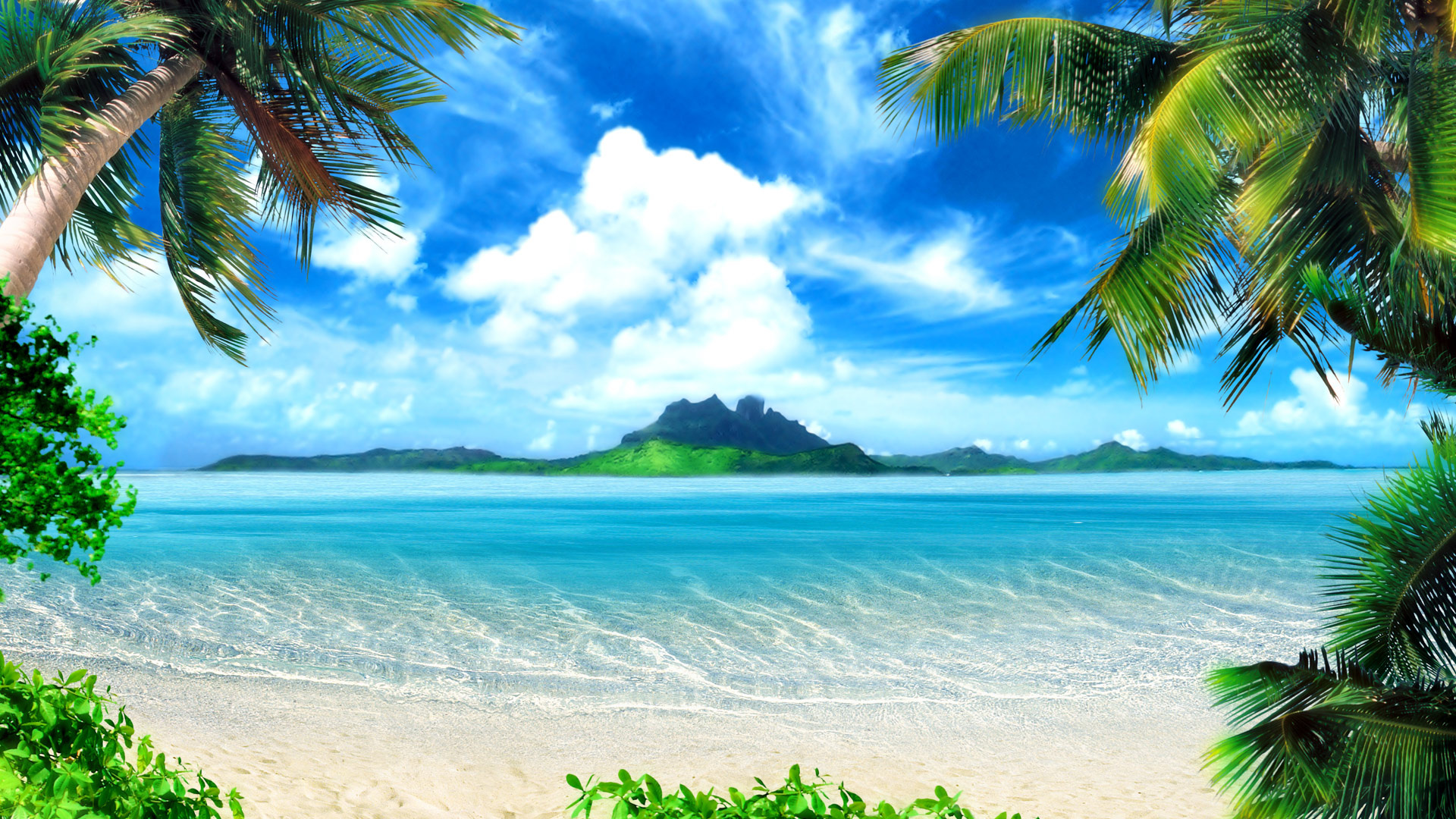 Wallpaper palm trees beach sea paradise desktop hd desktop Wallpaper 1920x1080
