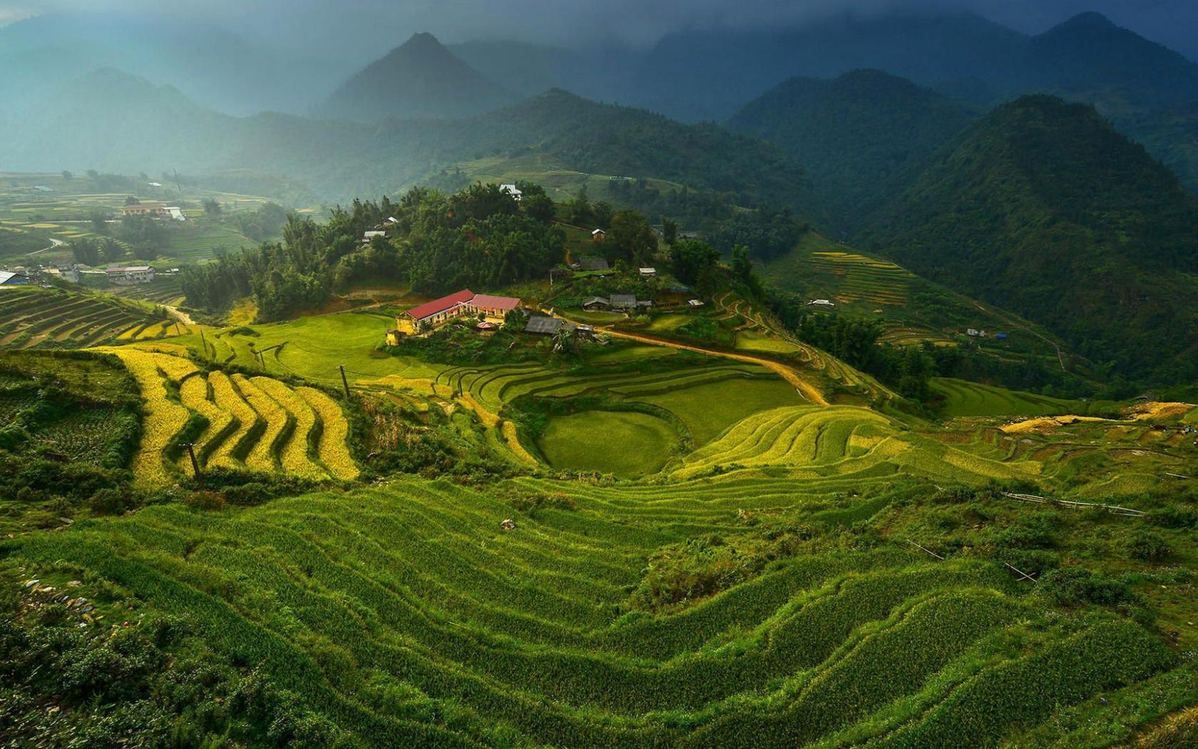 1680x1050 Rice Terraces in Vietnam desktop PC and Mac wallpaper 1680x1050