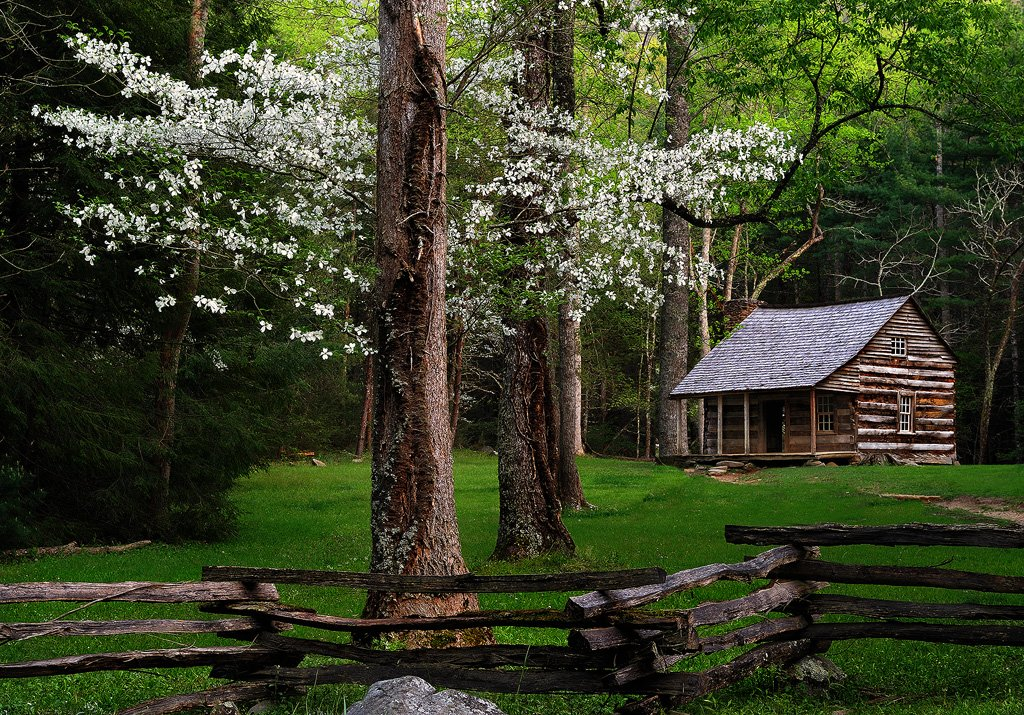 Carter Shields Cabin And Dogwood Fine Art Nature Photography by 1024x715