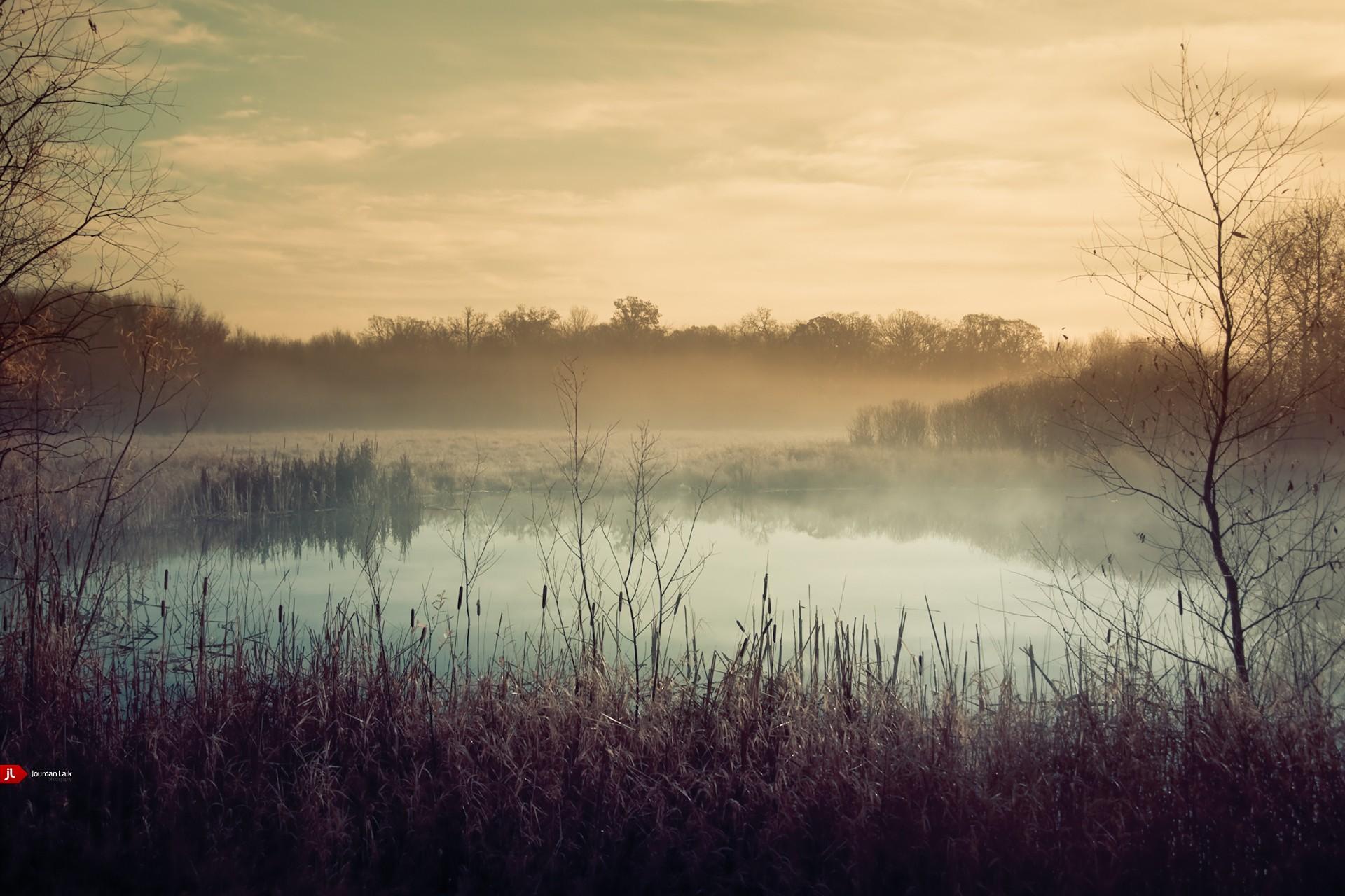 Туман над лесной речкой  № 636753 без смс